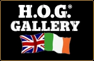 HOG Gallery UK and Ireland